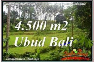 Affordable 4,500 m2 LAND IN SENTRAL UBUD FOR SALE TJUB675