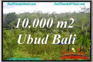 Magnificent UBUD BALI LAND FOR SALE TJUB681