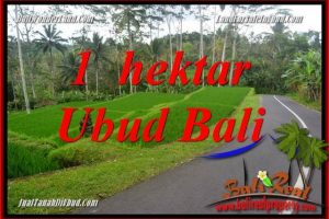 Affordable 10,000 m2 Land for sale in Ubud Tegalalang TJUB683