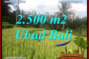 Beautiful Ubud Tegalalang BALI 2,500 m2 Land for sale TJUB690