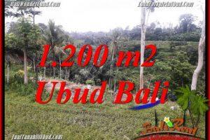 Affordable 1,200 m2 Land for sale in Ubud Bali TJUB699