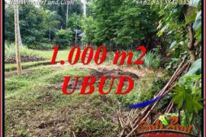 Beautiful Property Ubud Bali Land for sale TJUB712