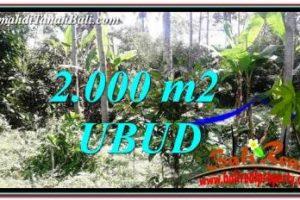 Affordable PROPERTY UBUD LAND FOR SALE TJUB747