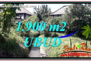 Magnificent LAND SALE IN UBUD TJUB759