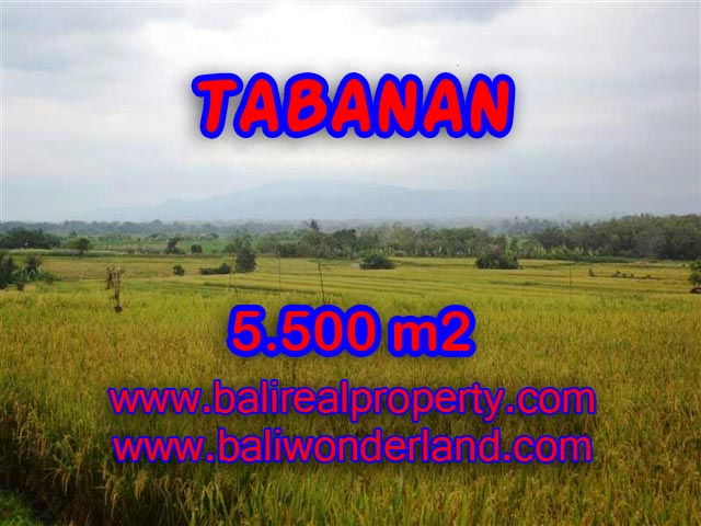 Land in Tabanan for sale