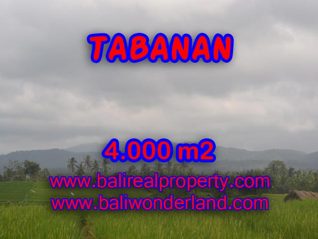 Spectacular Land for sale in Bali, Rice fields and beach view in Tabanan Bali – TJTB084