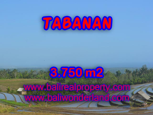 Exotic Land for sale in Tabanan Bali, beach and mountai view in TABANAN - TJTB074