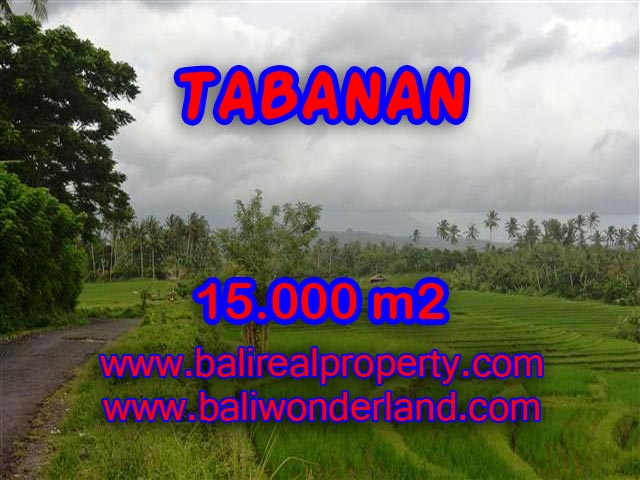 Land in Tabanan for sale, Amazing view in Tabanan soka Bali – TJTB094