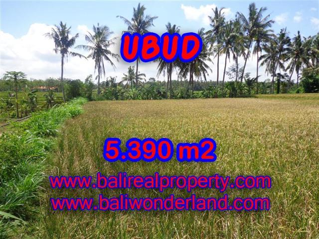 Land for sale in Bali, magnificent view Ubud Bali – TJUB342