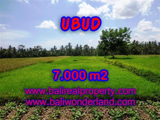 Land for sale in Bali, wonderful view in Ubud Bali – TJUB381