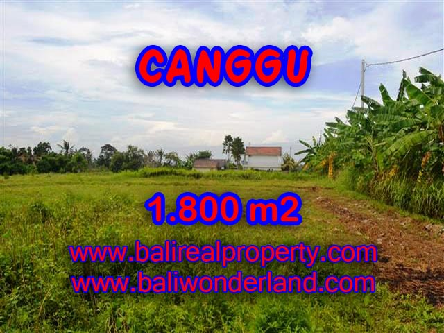Land in Bali for sale, extraordinary view in Canggu Batu Bolong – TJCG134