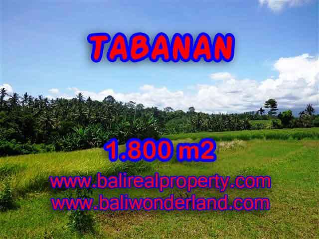 Land for sale in Bali, amazing view in Tabanan Selemadeg – TJTB106