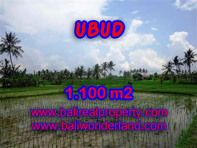 Land for sale in Bali, spectacular view in Ubud Bali – TJUB376