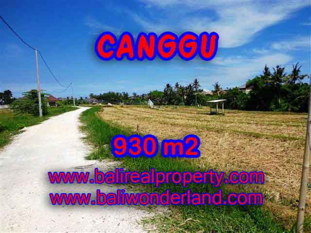 Beautiful Land for sale in Bali, Ocean and rice fields view in Canggu Bali – TJCG146