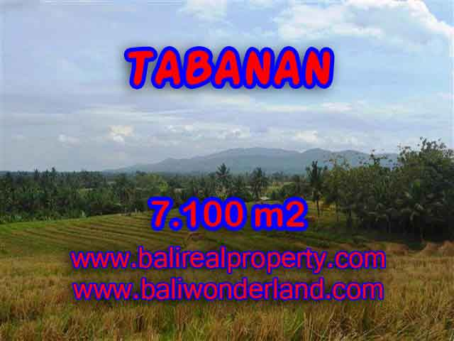 Beautiful Land for sale in Bali, paddy fields, mountain and ocean view in Tabanan Bali – TJTB125
