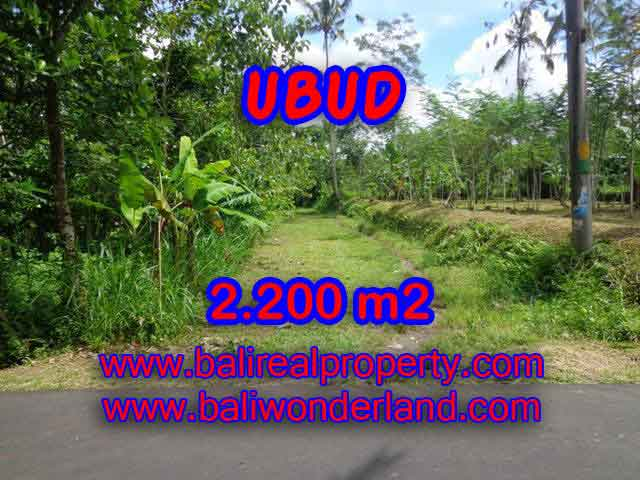 Land in Ubud for sale, Attractive view in Ubud Tegalalang Bali – TJUB408