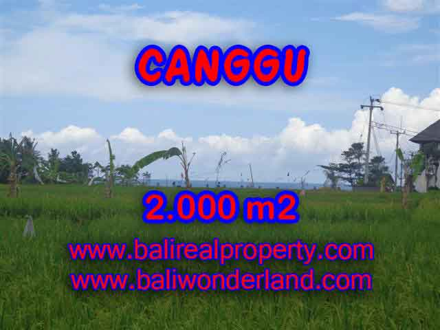 Land in Bali for sale, Outstanding view in Canggu Cemagi Bali – TJCG140