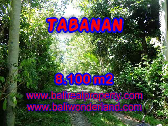 Land in Bali for sale, extraordinary view in Tabanan Penebel – TJTB113