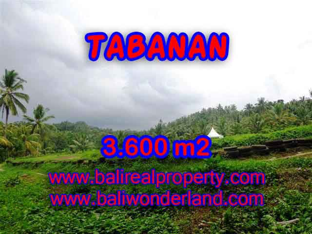 Land for sale in Bali, spectacular view in Tabanan Bali – TJTB117