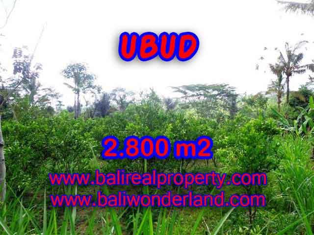 Land for sale in Bali, Fantastic view in Ubud Tegalalang – TJUB375