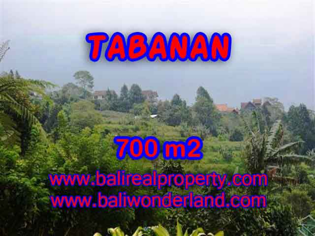 Land in Tabanan Bali for sale, Outstanding view in Tabanan Baturiti – TJTB103
