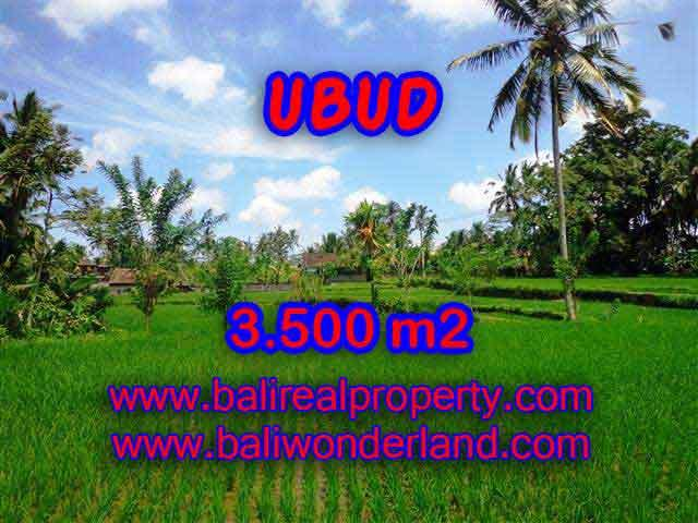 Outstanding Property in Bali for sale, land in Ubud for sale – TJUB388