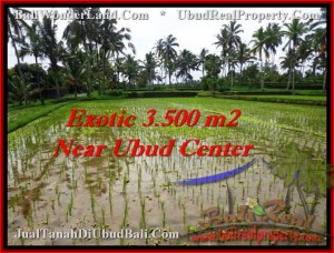 Affordable UBUD 3,500 m2 LAND FOR SALE TJUB477