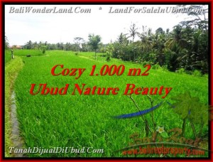 Exotic 1,000 m2 LAND SALE IN UBUD TJUB478