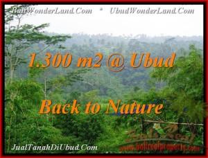 Exotic PROPERTY UBUD BALI 1,300 m2 LAND FOR SALE TJUB481
