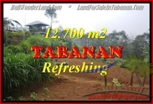 Magnificent 12,700 m2 LAND IN TABANAN BALI FOR SALE TJTB167