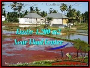 Beautiful UBUD BALI 4,200 m2 LAND FOR SALE TJUB502