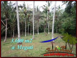 Exotic 3,600 m2 LAND FOR SALE IN TABANAN BALI TJTB211