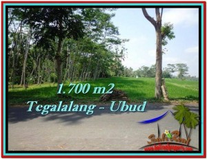 Exotic 1,700 m2 LAND IN UBUD BALI FOR SALE TJUB518
