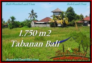 FOR SALE 1,750 m2 LAND IN TABANAN TJTB231
