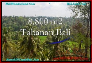 FOR SALE Magnificent LAND IN Tabanan Selemadeg BALI TJTB238
