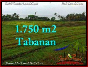 Affordable PROPERTY 1,750 m2 LAND SALE IN TABANAN BALI TJTB262
