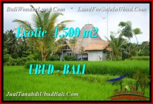 Affordable PROPERTY 1,500 m2 LAND SALE IN Ubud Pejeng TJUB541