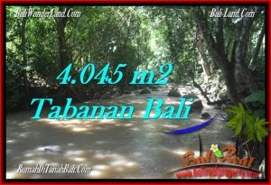 Affordable PROPERTY TABANAN BALI 4,045 m2 LAND FOR SALE TJTB277