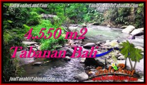 4,550 m2 LAND SALE IN TABANAN TJTB284
