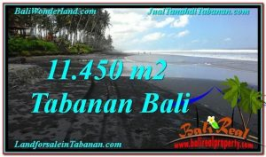 FOR SALE Affordable 11,450 m2 LAND IN TABANAN TJTB291