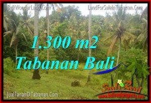 Magnificent TABANAN 1,300 m2 LAND FOR SALE TJTB314
