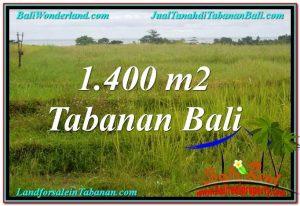 Exotic PROPERTY Tabanan Selemadeg BALI LAND FOR SALE TJTB309