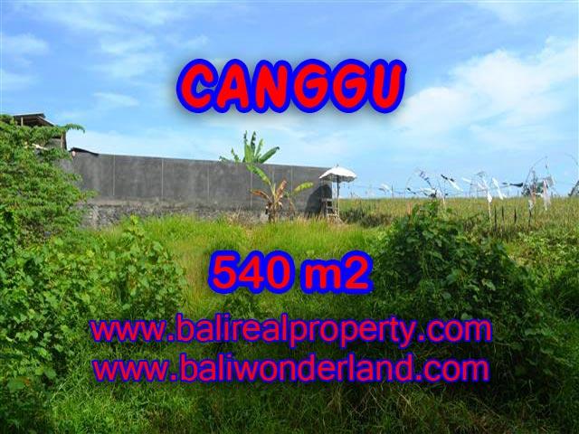 Land for sale in Canggu Bali, Wonderful view in Canggu – TJCG131