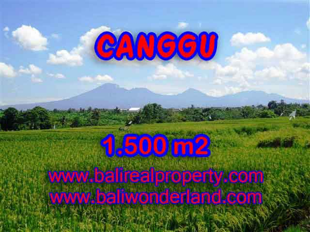 Land in Bali for sale, fantastic view in Canggu Bali – TJCG144