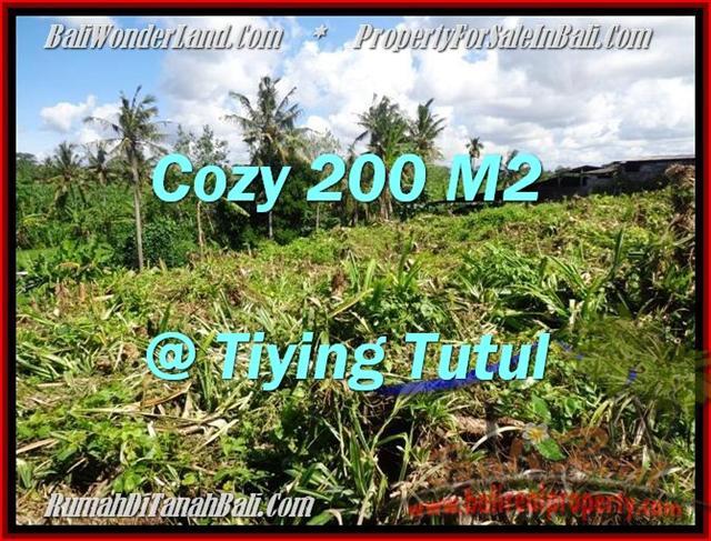 Dijual Tanah di Canggu