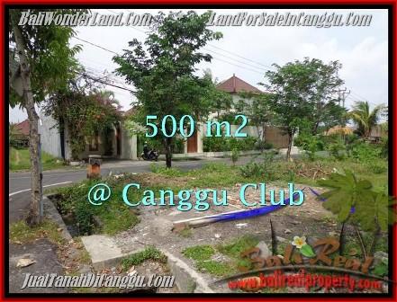 Beautiful PROPERTY CANGGU 500 m2 LAND FOR SALE TJCG176
