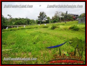 Beautiful PROPERTY 1.000 m2 LAND IN CANGGU BALI FOR SALE TJCG161