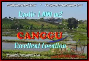 FOR SALE 1.000 m2 LAND IN Canggu Kayutulang BALI TJCG168