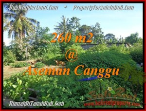 Magnificent 260 m2 LAND IN CANGGU FOR SALE TJCG174