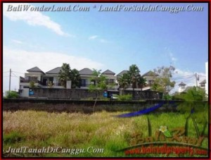 LAND IN Canggu Batu Bolong FOR SALE TJCG160